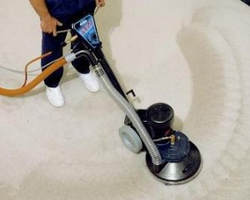 Carpet cleaning service in progress in west palm beach, fl.